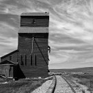 Last One Standing at Wood Mountain, Saskatchewan